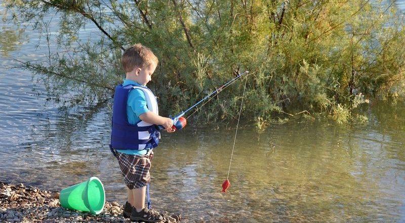Czym łowić ryby